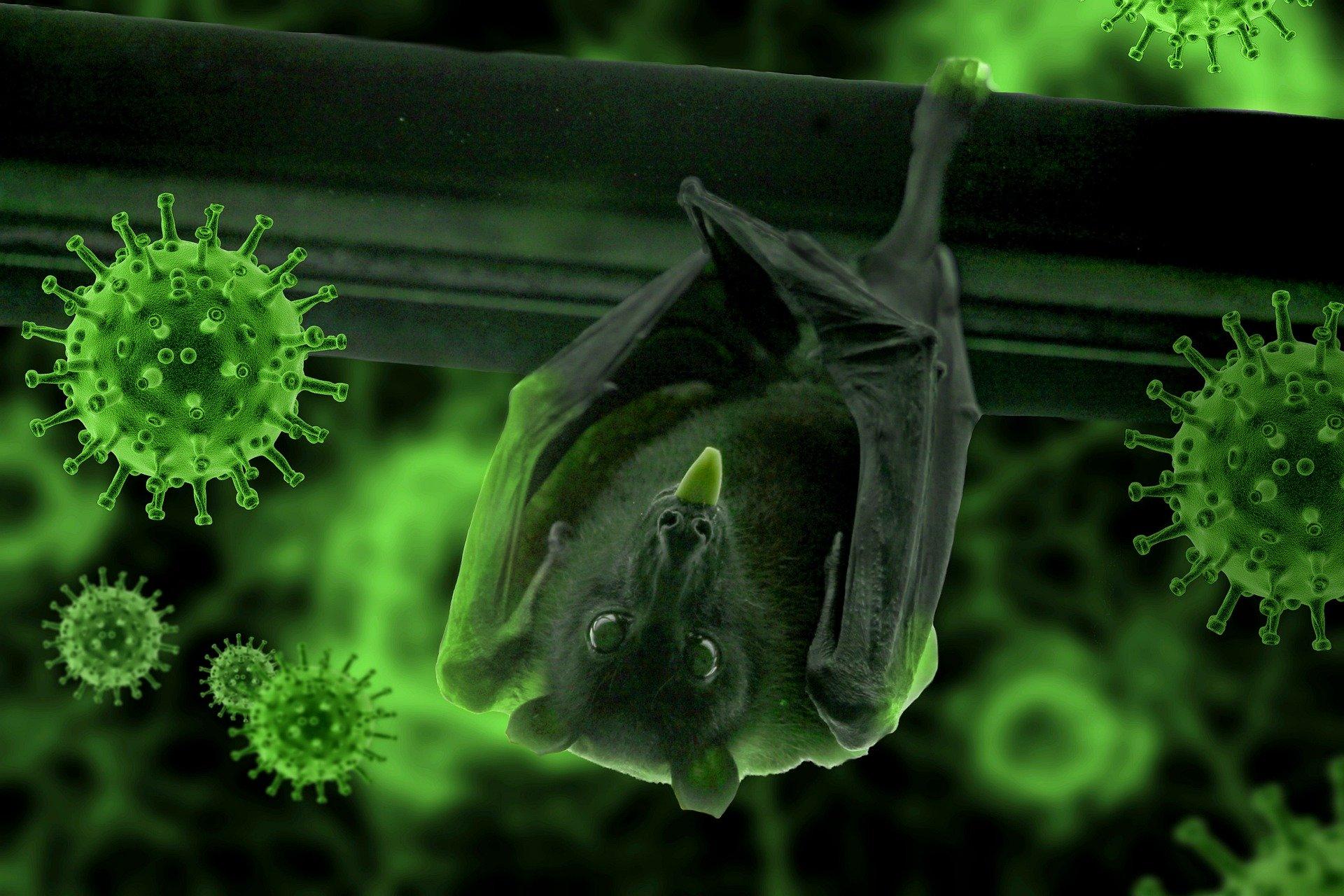 Spriječite širenje dezinformacija o koronavirusu