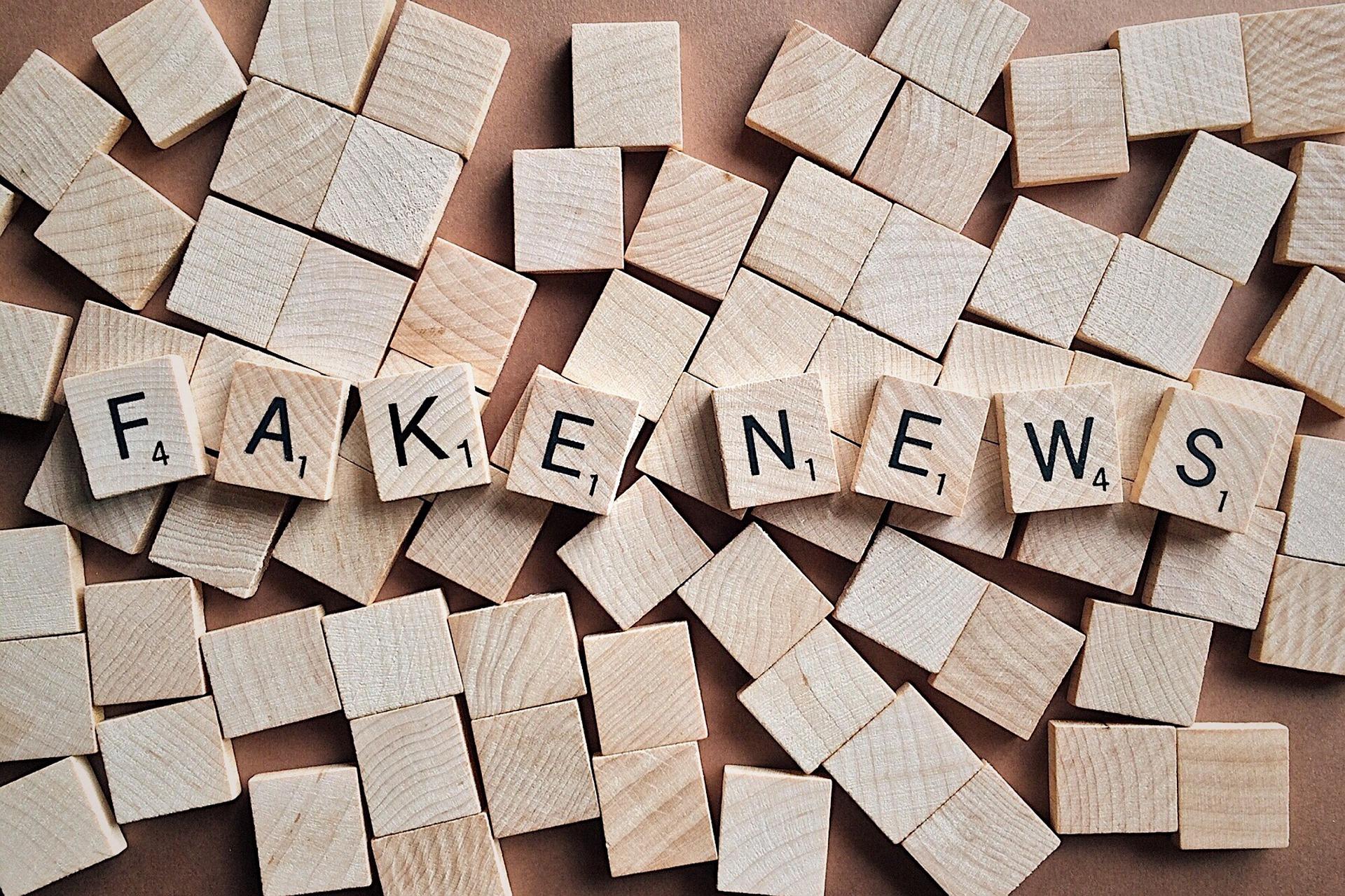 Država da pokrene borbu protiv dezinformacija